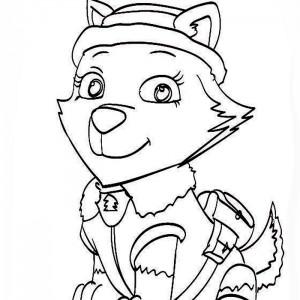 dibujos para colorear patrulla canina everest
