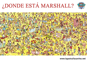 encuentra a marshall